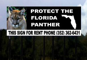Florida Panther Billboard